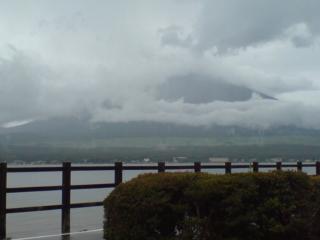 雨にも負けず風にも負けず